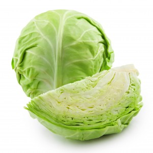 cabbage-green-300x300