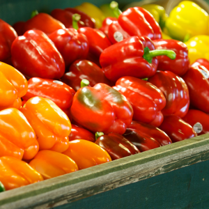 coloured peppers at Harvest Barn Country Markets