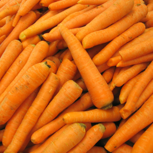 Carrots at Harvest Barn Country Market