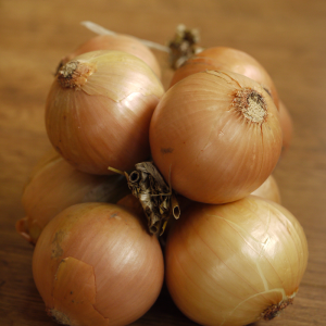 onions at Harvest Barn Country Market