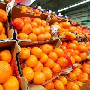 mandarine-oranges